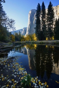 El Cap Reflection 1
