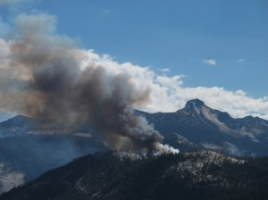 Meadow Fire-Yosemite National Park