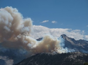 Meadow Fire-Yosemite National Park 2