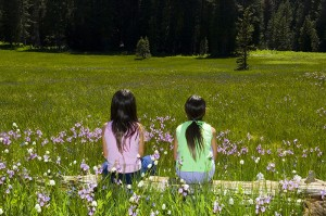 Kids in Meadow