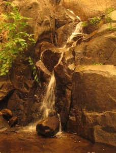 Wildcat Waterfall